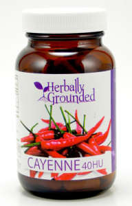 Cayenne-40hu